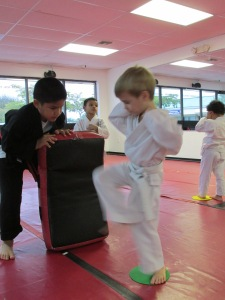 youth martial arts Boca Raton - kicking target